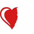 logo-braslet